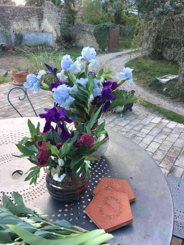 Bouquet de Fleurs devant le bassin du moulin de La pierre écrite des chambres d'hôtes